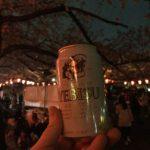 【お花見2016】上野公園で乾杯!雨が降る前に夜桜見物