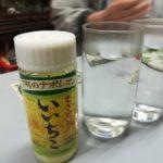 横浜・子安 角打ち「美加登屋酒店」茶トラのネコと戯れた休日の午後