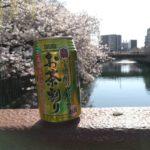 【2018お花見】大岡川沿いを缶ビール片手にのんびりそぞろ歩き