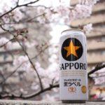 【2019お花見】ド迫力の桜!『大岡川』黄金町から弘明寺までお散歩しながら6時間お花見