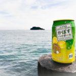 【横須賀】潮風を感じながら乾杯!『うみかぜ公園』でジンギスカン食べながらデイキャンプしてみた